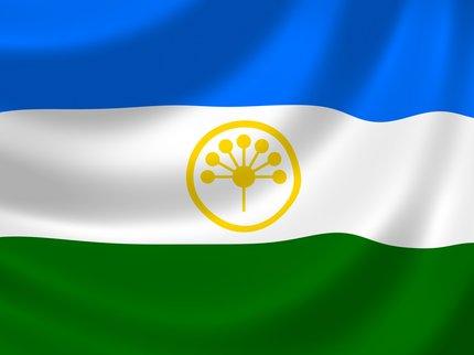 ВБашкирии около здания администрации появился африканский флаг