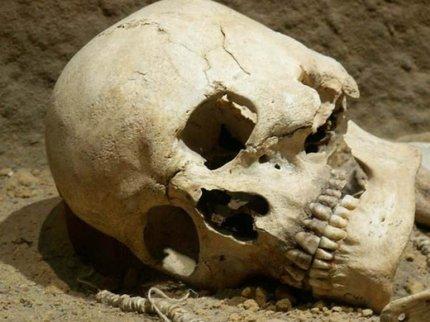 ВУфе взаброшенных садах найдены скелетированные останки человека