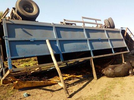Грузовой автомобиль с большим рогатым скотом опрокинулся вкювет вБашкирии