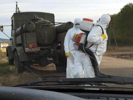 ВТатарстане создали 11 КПП для пресечения ящура изБашкирии