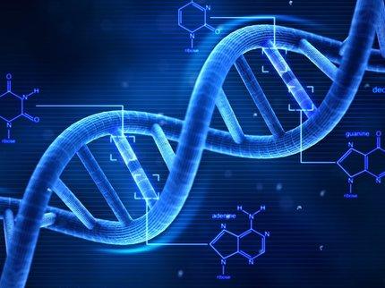 На Алтае научились определять сексуальность человека по генетическим тестам
