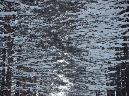 ВУфе снегопад продолжался неменее 14 часов