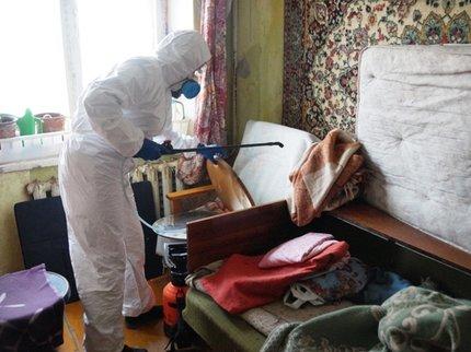 Вуфимскую квартиру, где жили 16 кошек, вновь пришли судебные приставы